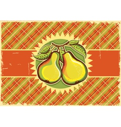 Pears vintage label vector image