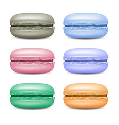 Realistic macarons set detailed colourful vector