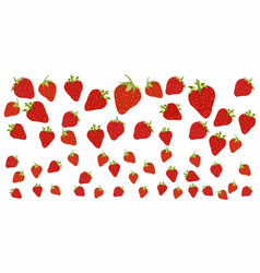 strawberry pattern on white background vector image