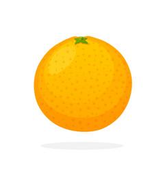 Whole orange vector