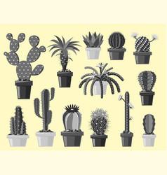 cactus flat style nature desert flower monochrome vector image