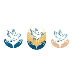 Dove bird carrying olive branch in beak as a peace vector