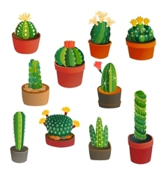Cute cartoon cactus collection vector image vector image