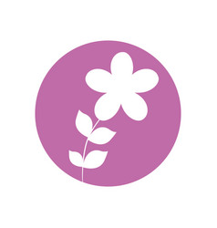 flower botanical natural icon vector image vector image