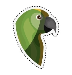 cute parrot isolated icon vector image
