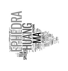 Ephedra ma huang text background word cloud vector