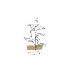 Botanical hand drawn minimal logo graphic tree vector
