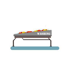 fresh ripe apples washable on a conveyor line vector image