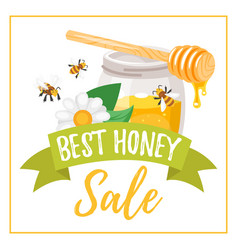 honey sale banner vector image
