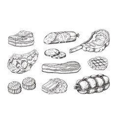 meat steak vintage food sketch with butchery vector image