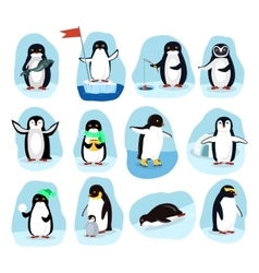 Penguins Daily Activities Posters Cartoon Set vector