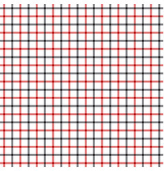 red black tattersall pattern vector image