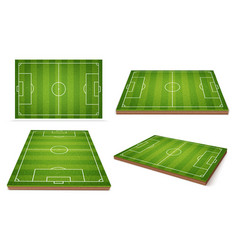 soccer field different positions vector image