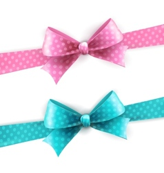 isolated blue and pink polka dots bow vector image