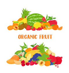 Banner with colorful fruits and berries vector