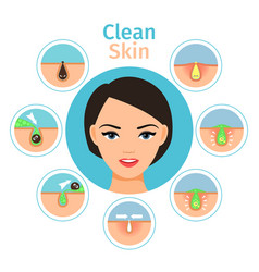 Female facial treatments vector