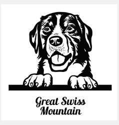 great swiss mountain - peeking dogs - breed face vector image