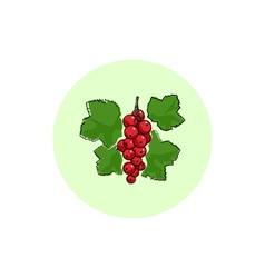 Icon Colorful Redcurrant vector image