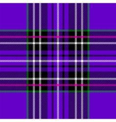 purple tartan vector image vector image