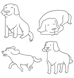 Set of dog golden retriever vector