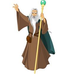 Sorcerer wizard vector image