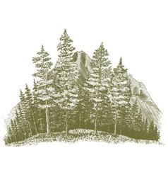 Woodcut Mountain Drawing vector image vector image