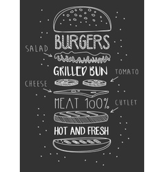 chalk drawn components classic cheeseburger vector image