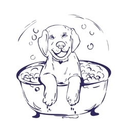 Dog bath grathic vector