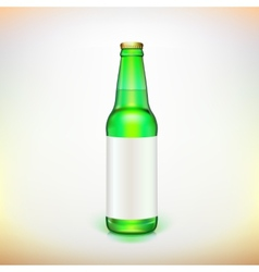 Glass beer green bottle and label Product packing vector image