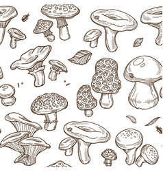 Mushrooms sketch seamless pattern edible vector