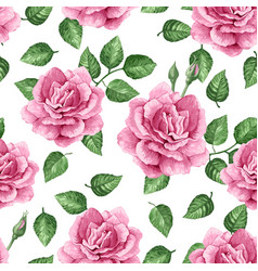 Rose flowers petals and leaves in watercolor vector
