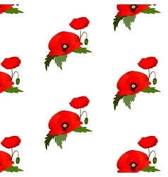 Seamless pattern with poppies flowers vector image