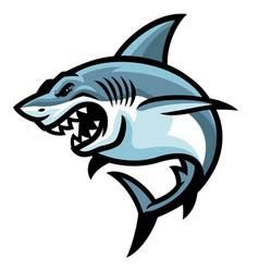 Shark fish logo mascot vector