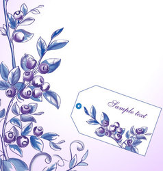 Blueberry frame vector