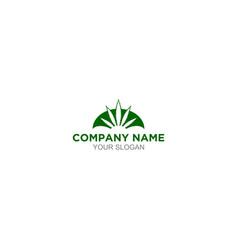Cannabis insurance logo design vector