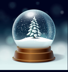 crystal ball with snowy christmas tree spruce vector image