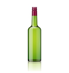 Glass whiskey bottle with screw cap vector