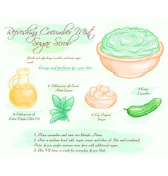 Hand drawn of mint cucumber refreshing sugar scrub vector