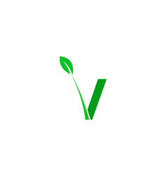 letter v green leaf logo design element vector image