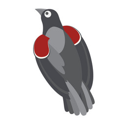 Pigeon flat on white vector