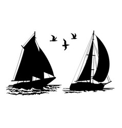 Silhouettes sailing yachts and seagulls vector