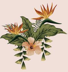 summer floral composition botanical print vector image