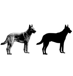 Watchdog silhouette and sketch vector