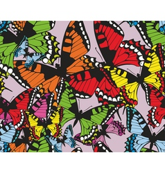 Colorful tropical seamless pattern with butterflie vector image vector image