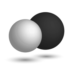3D sphere Black and white realistic balls vector image