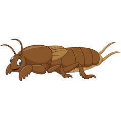Cartoon mole cricket vector