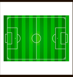 football field or soccer pitch background vector image