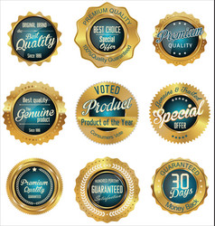 gold and blue premium quality labels vector image