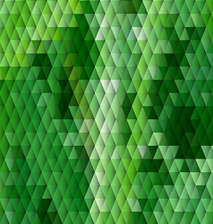 Grass themed background with diamond grid vector image