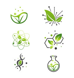vegan green leaf abstract science lab set vector image